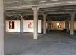 fixation-exhibit-2014-2