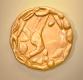 Tomorrow's-Promise----Blastocyst.-NILM_SC_2012